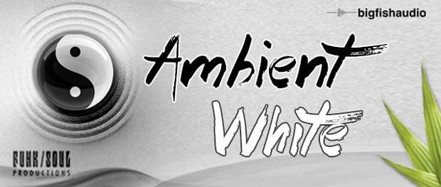 Ambient White Header