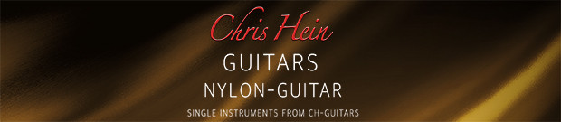 Chris Hein Nylon Guitar Header