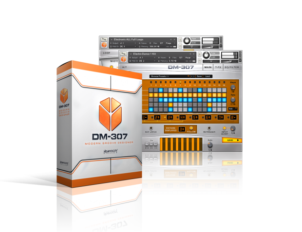 DM-307 interface