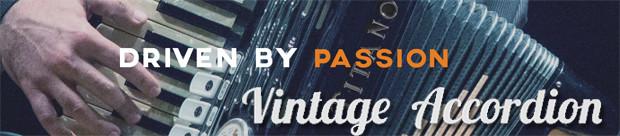 Vintage Accordion header