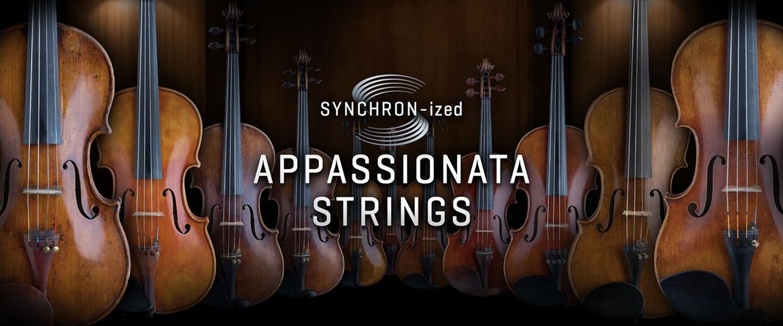 Synchron Appasionata Strings Banner