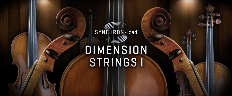 Synchronized Dimension Strings I