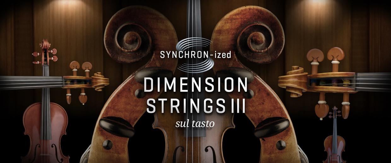 Synchronized Dimension Strings III