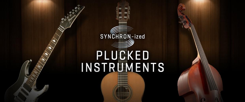 Synchronized Plucked Instruments