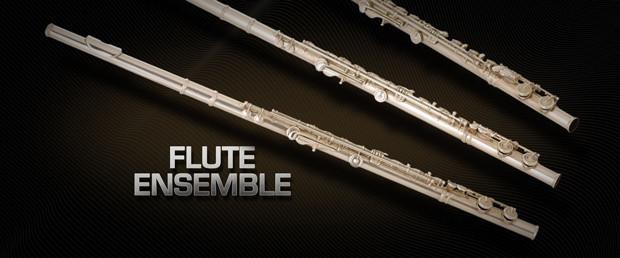 VSL Flute Ensemble Header