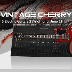 Ample Sound Electric Guitars Special