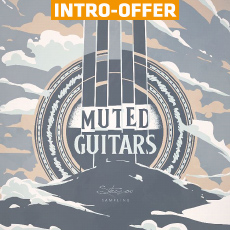 Strezov Sampling - Muted Guitars Intro Offer