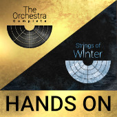 The Orchestra Complete and Strings Of Winter Hands On