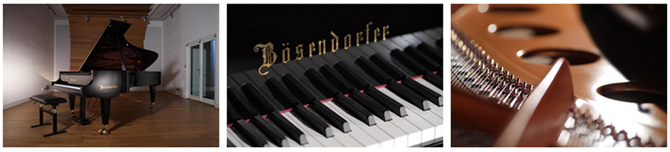 Boesendrofer Gallery