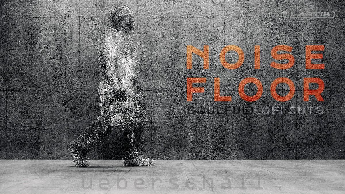 Noise Floor Banner