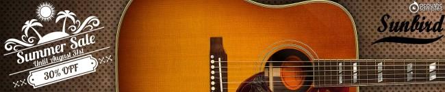 Banner Acousticsamples Summer Sale - 30% OFF