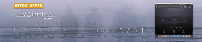Banner Evolution Series - Chronicles Brass & Wood