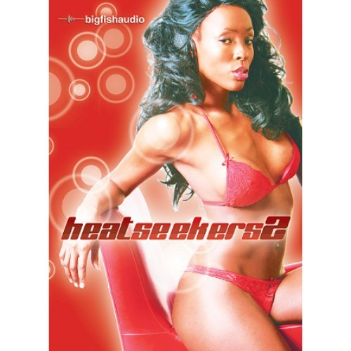 Heat Seekers 2