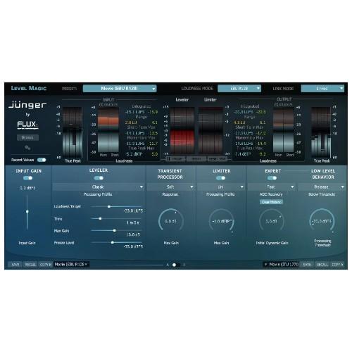 Jünger Audio Level Magic Stereo