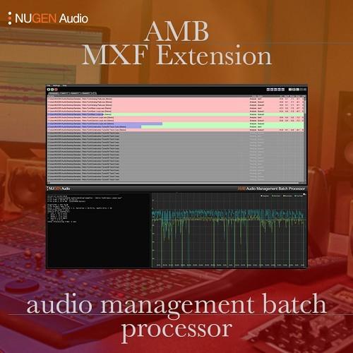 AMB MXF Extension