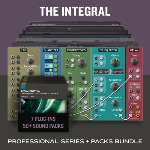 The Integral Bundle
