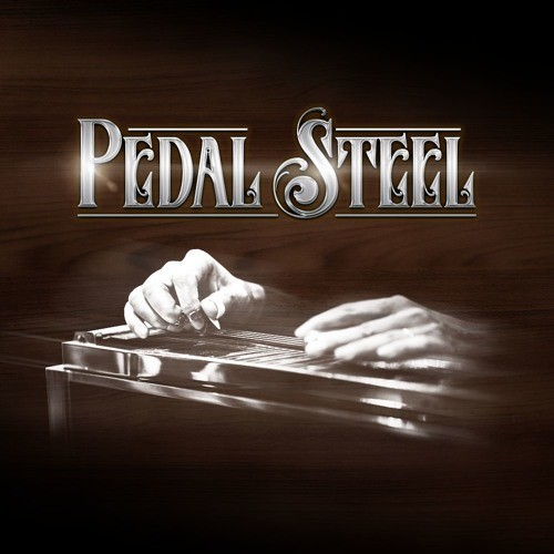 Pedal Steel ISW