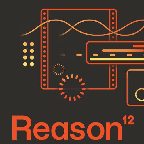 Reason 12