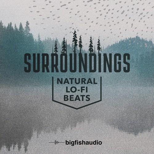 Surroundings: Natural Lo-Fi Beats