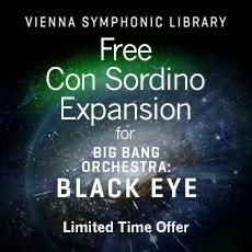 VSL - BBO Black Eye - Con Sordino Special