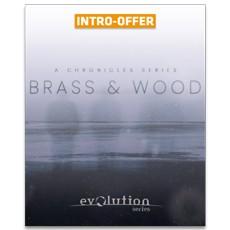 Evolution Series - Chronicles Brass & Wood