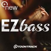 Meet Your New Bass Player