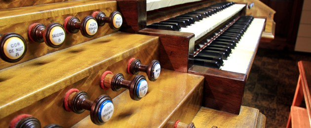 Organum Venezia shot