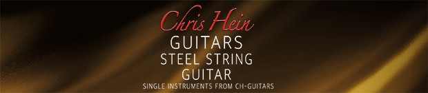 Steel Guitar Header