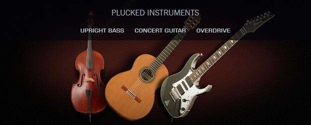 Plucked Instruments Bundle