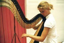 Harp DE
