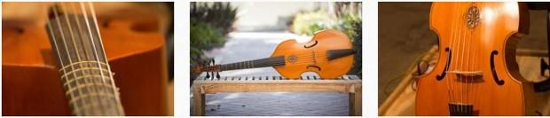 Viola da Gamba Instrument