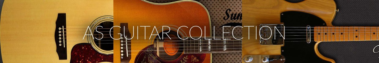 AS Guitar Collection Banner