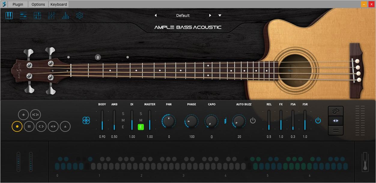 Acoustic Bass III GUI