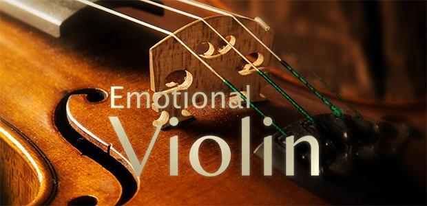 Emmotional Violine Banner DE