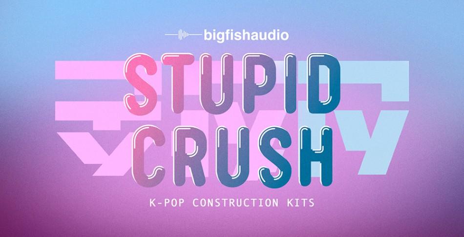 Stupid Crush Banner