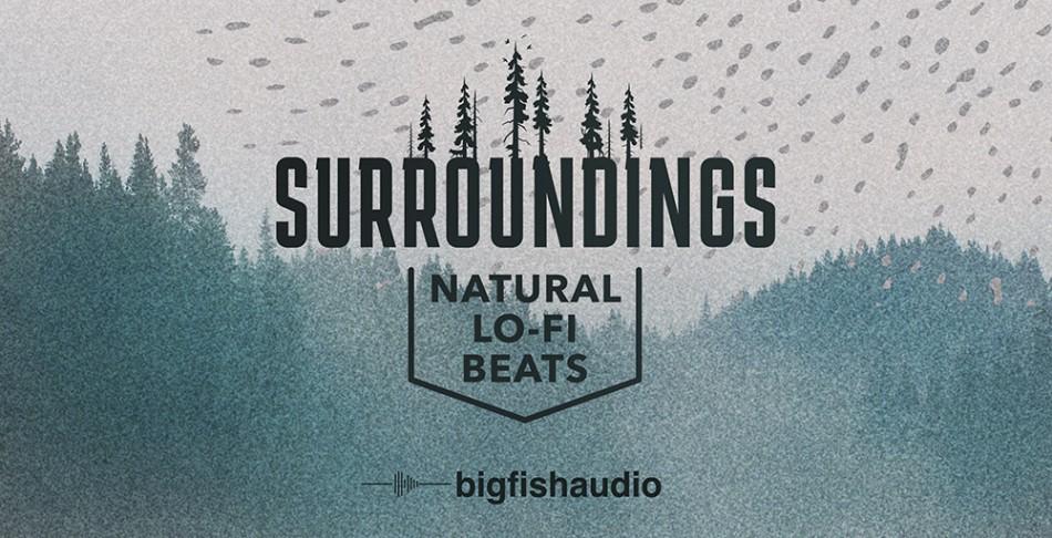 Surroundings Header