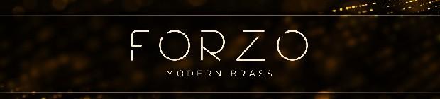 FORZO Modern Brass Header