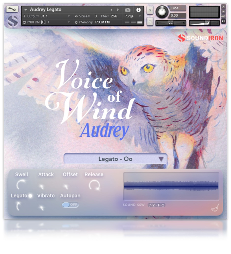 Voice of Wind Audrey GUI 1