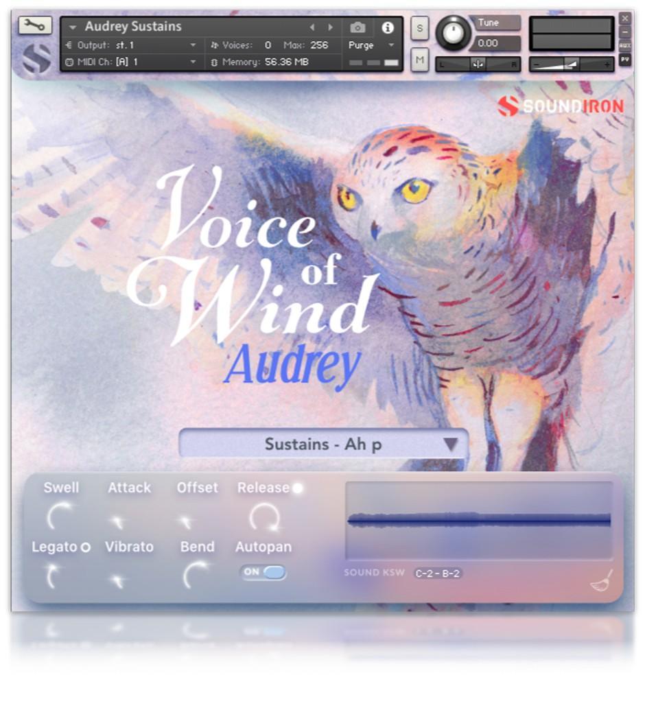 Voice of Wind Audrey GUI  4