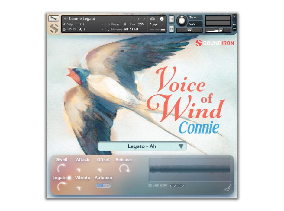 Voice of Wind Connie GUI