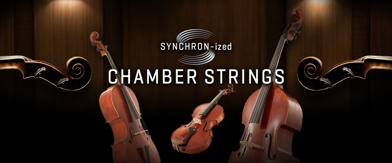 Synchron Chamber Strings Banner