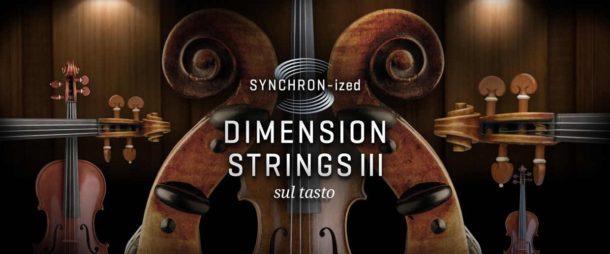 Synchronized Dimension Strings III