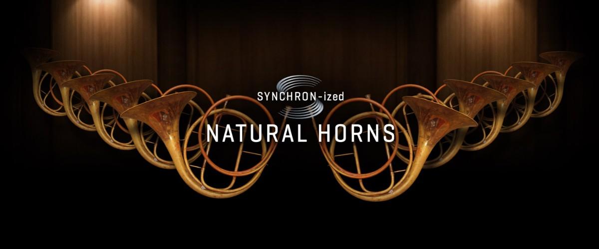 SYNCHRON-ized Natural Horns Banner