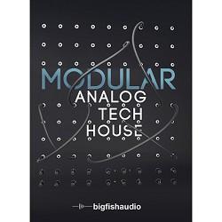 Modular: Analog Tech House