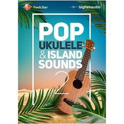 Pop Ukulele and Island Sounds 2