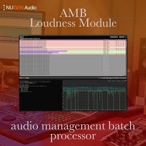 AMB Loudness Module