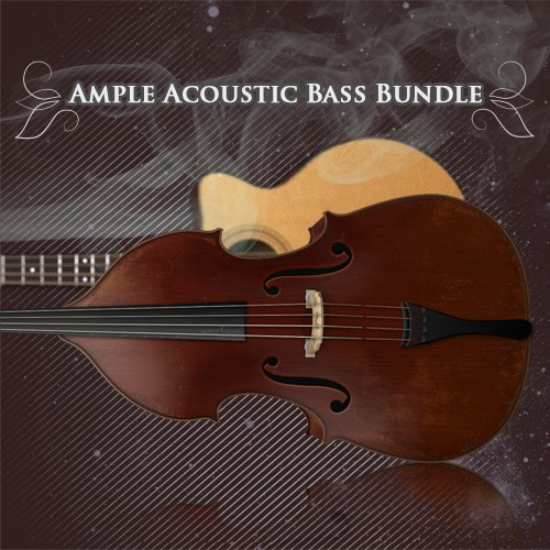 Ample 2in1 Acoustic Bass Bundle