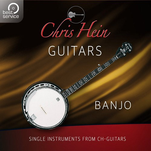Chris Hein Guitars - Banjo Add-On