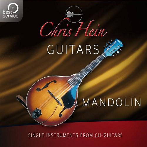 Chris Hein Guitars - Mandolin Add-On