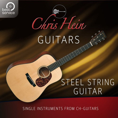 Chris Hein Guitars - Steel String Guitar